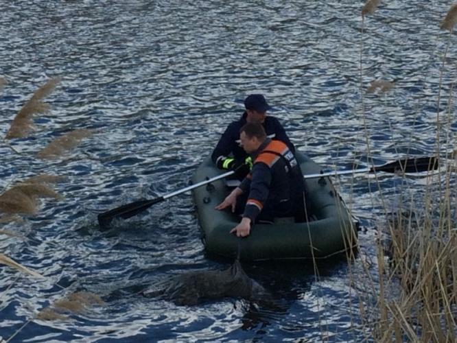 В Константиновке спасатели изъяли из водоема утонувшего мужчину