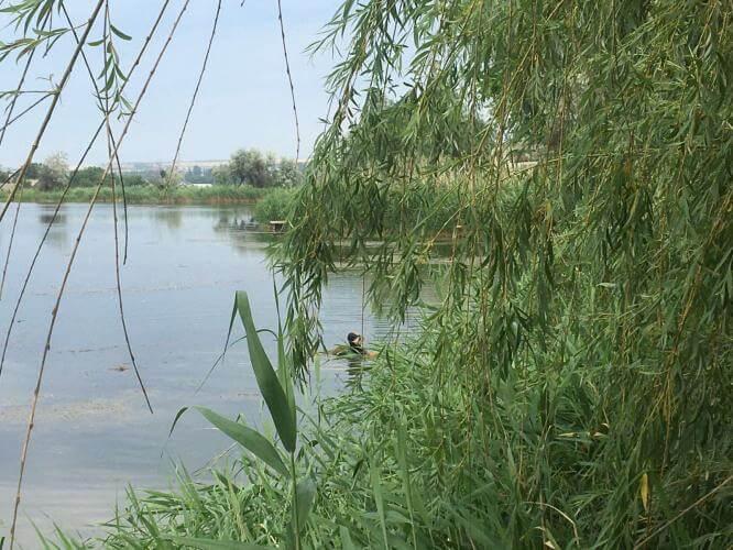 В одном из прудов Константиновки утонул мужчина