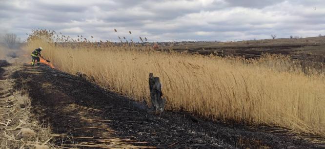 В Константиновке спасатели ликвидировали пожар камыша