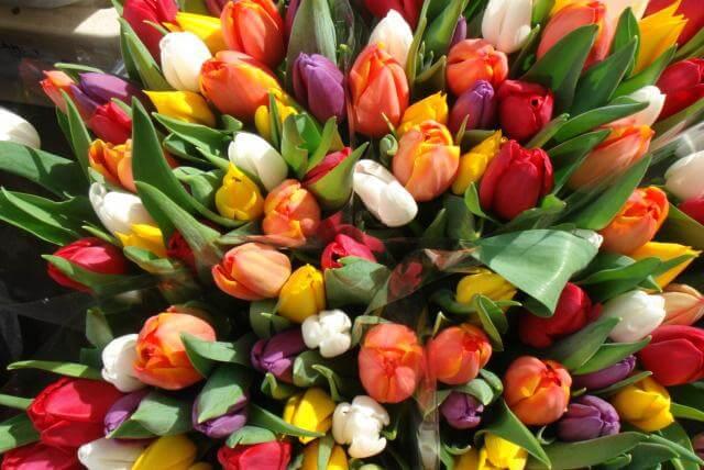 """Доставка цветов """"Mfl.com.ua"""": красочные и свежие композиции в любое время"""