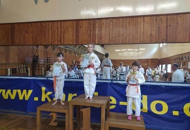 13 медалей заработали спортсмены из Константиновки в Кропивницком