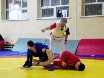 Константиновцы приняли участие в чемпионате области по борьбе самбо