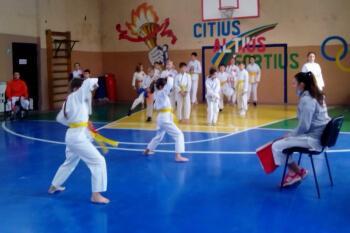 Каратисты Константиновки обладатели Кубка области по традиционному каратэ