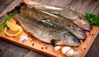 Можно ли есть сырую рыбу?