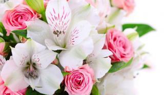 Цветы - самый распространенный презент