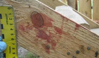 В Константиновке местный житель забил до смерти свою возлюбленную