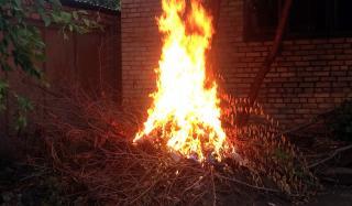 Правоохранители Константиновки путем сжигания ликвидировали наркотики