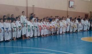 Константиновка приняла турнир по традиционному каратэ, посвященный Дню студента