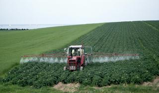 Почему стоит купить инсектицид?
