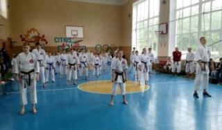 В Константиновке состоялся областной турнир по традиционному каратэ